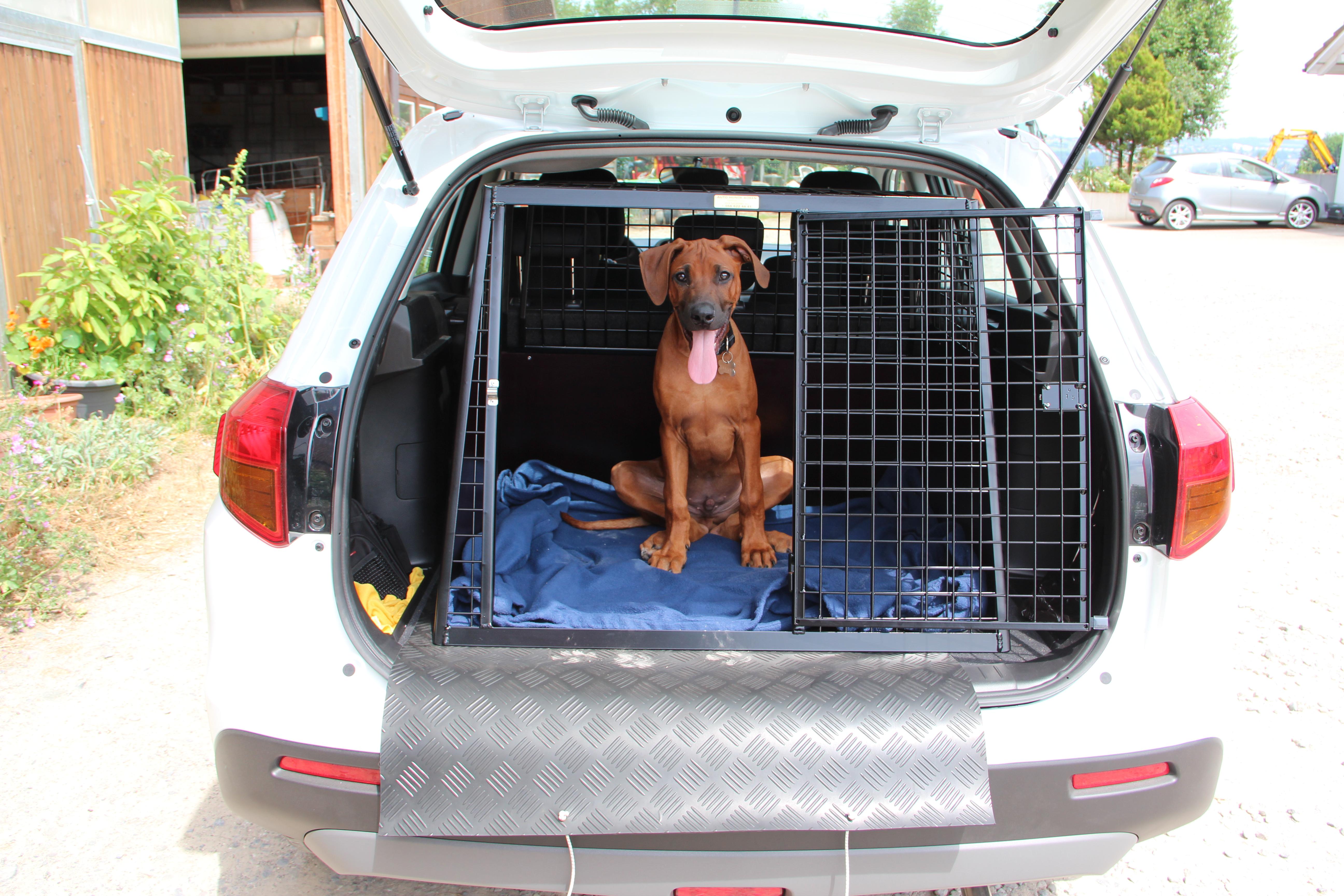 schwarze Auto-Hundebox für einen Toyota RAV4